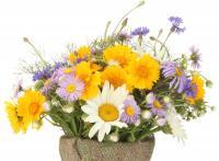 Смеси цветов