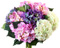 Для садовых и луковичных цветов