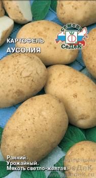 Картофель Аусония /Седек/