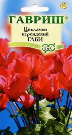 Цикламен персидский Габи 3шт /Гавриш/