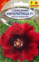 Глоксиния Императрица F1 винно-красная (Нидерланды) /Аэлита/