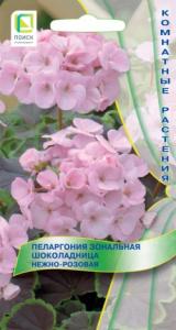 Пеларгония зональная Шоколадница Нежно-розовая (5 шт) /Поиск/