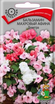Бальзамин махровый Афина Деметра (5 шт) /Поиск/