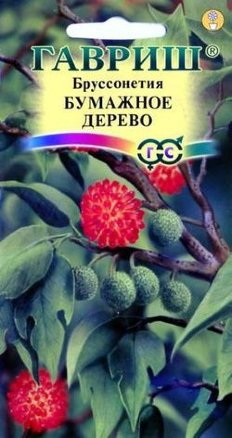 Бруссонетия Бумажное дерево /Гавриш/