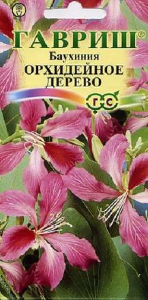 Баухиния Орхидейное дерево /Гавриш/