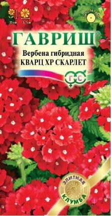 Вербена гибридная Кварц ХР Скарлет /Гавриш/