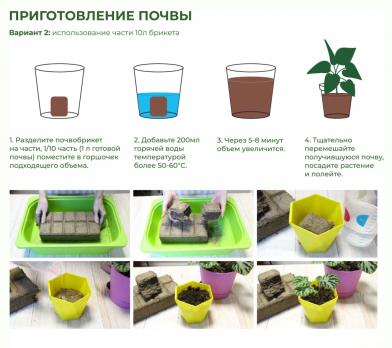 Почвобрикет Петуния 5л круглый /БиоМастер/