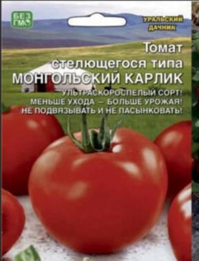 Томат Монгольский Карлик /Уральский дачник/