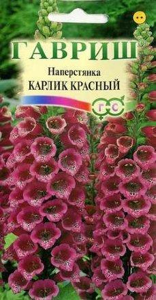 Наперстянка Карлик красный /Гавриш/