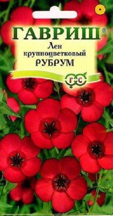 Лен крупноцветковый Рубрум /Гавриш/ Устойчив к заморозкам!