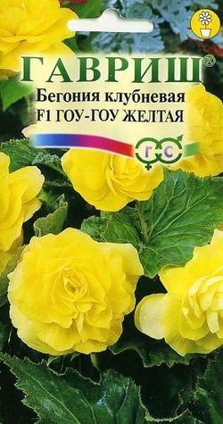 Бегония Гоу-гоу желтая /Гавриш/