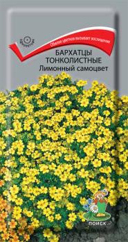 Бархатцы тонколистные Лимонный самоцвет (0,1 г) /Поиск/
