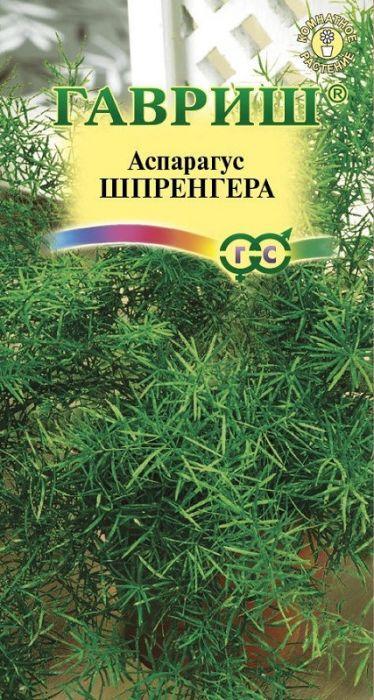 Аспарагус Шпренгера /Гавриш/