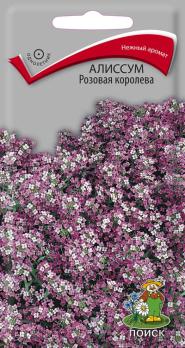 Алиссум розовая королева (0,3 г) /Поиск/