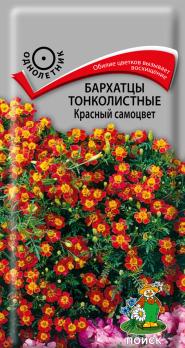 Бархатцы тонколистные Красный самоцвет (0,1 г) /Поиск/