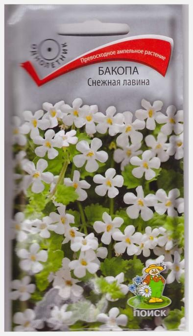 Бакопа Снежная лавина (5 шт) /Поиск/