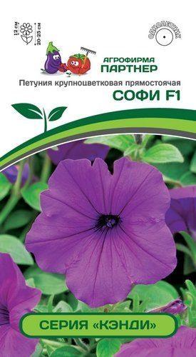 Петуния Кэнди Софи F1 крупноцветковая прямостоячая лиловая (5 шт) /Партнер/