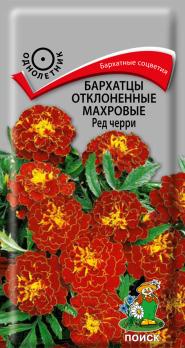 Бархатцы отклоненные махровые Ред черри (0,3 г) /Поиск/