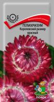 Гелихризум Королевский размер красный (0,1 г) /Поиск/