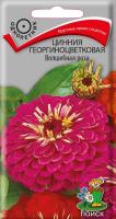 Цинния георгиноцветковая Волшебная роза (0,4 г) /Поиск/