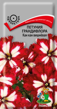 Петуния грандифлора Кан-кан вишневая (10 шт) /Поиск/