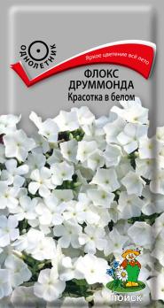 Флокс друммонда Красотка в белом (0,1 г) /Поиск/