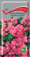 Флокс друммонда Промис розовый (10 шт) /Поиск/