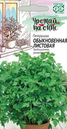 Петрушка Обыкновенная листовая /Гавриш/ Урожай на окне