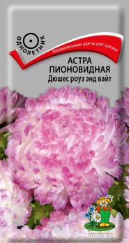 Астра пионовидная Дюшес роуз энд вайт (0,3 г) /Поиск/