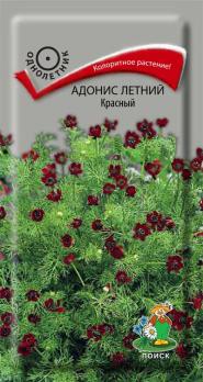 Адонис летний красный (0,3 г) /Поиск/
