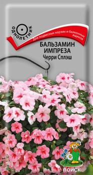 Бальзамин Импреза Черри Сплэш (10 шт) /Поиск/