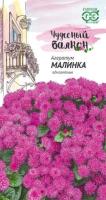 Агератум Малинка /Гавриш/ Чудесный балкон