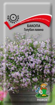 Бакопа Голубая лавина (5 шт) /Поиск/