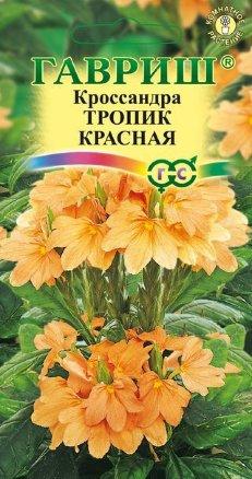 Кроссандра Тропик красная /Гавриш/ Элитная клумба