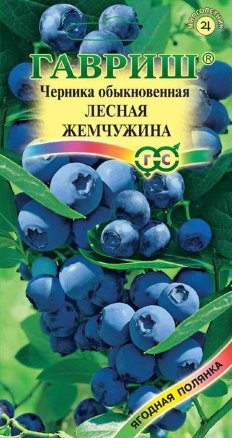 Черника обыкновенная Лесная жемчужина /Гавриш/