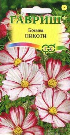 Космея Пикоти /Гавриш/