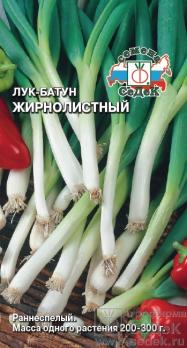 Лук батун Жирнолистный /Седек/