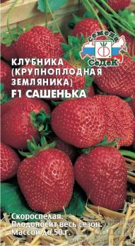 Клубника Сашенька F1 (крупноплодная земляника ремонтантная) /Седек/