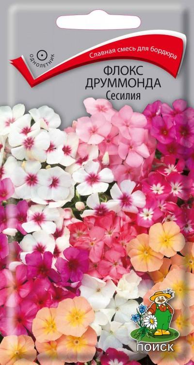 Флокс друммонда Сесилия (0,3 г) /Поиск/
