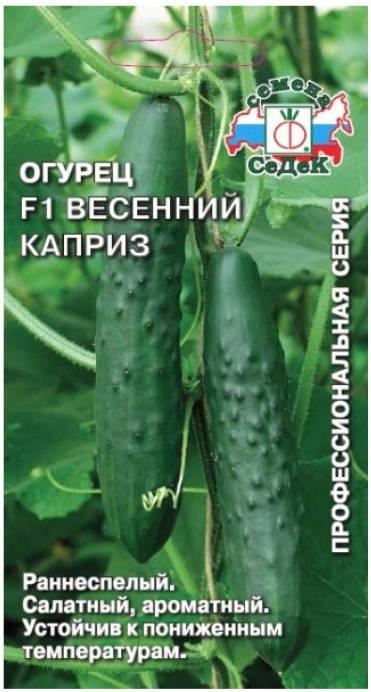 Огурец Весенний каприз F1 /Седек/