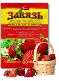 Завязь 2 г для ягод /Ортон/
