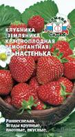 Земляника ремонтантная Настенька F1 крупноплодная /Седек/