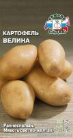 Картофель Велина /Седек/